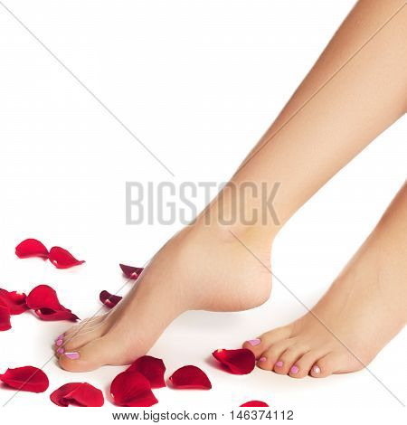 Healthy Woman's Legs. Legs Isolated On White. Beautiful Woman Le