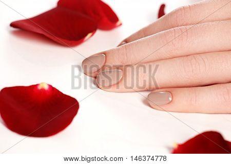 Beautiful Female Finger Nails With Natural Nail Closeup On Petal