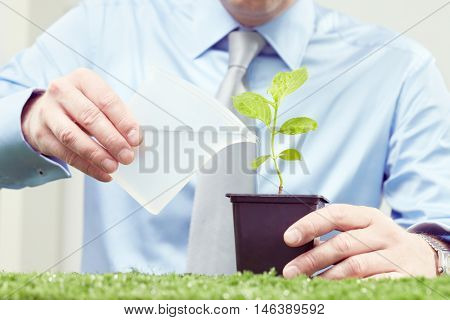 Close up of male hands watering potted plant
