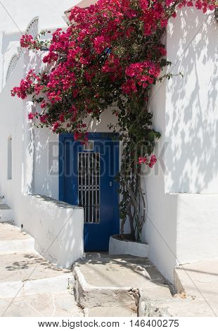 Traditional greek island house entrance with blue door and white backyard in the island of Sifnos in Greece.