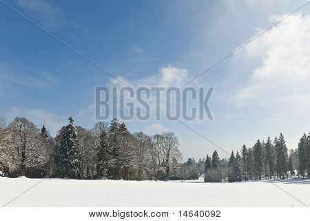 Snowcovered Field