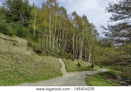 Vitosha mountain area by Jeleznitsa village, Sofia