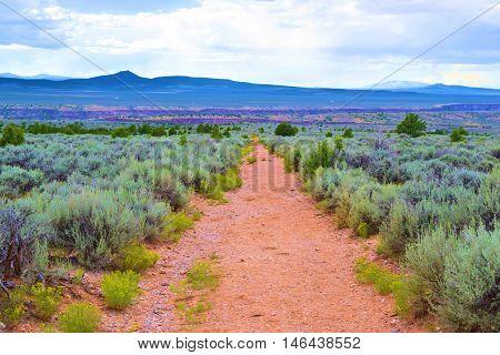 Hiking trail surrounded by sagebrush taken at the High Desert Mesa near Taos, NM