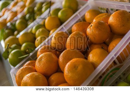 Fruit market with various colorful fresh fruits