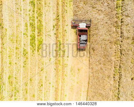 Aerial view to harvest of rapeseed field. Industrial background on agricultural theme. Biofuel production from above. Agriculture and environment in European Union.