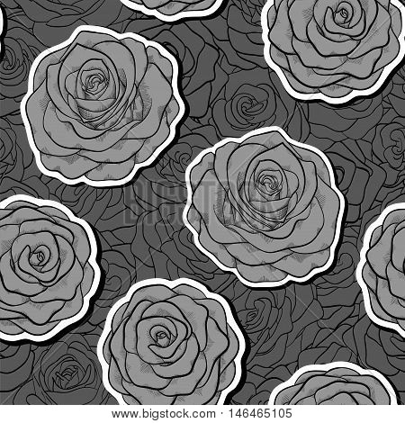 beautiful black and white seamless pattern in roses with contours. Hand-drawn contour lines and strokes.