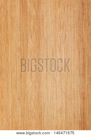 Wood texture close-up. Tasmanian oak quarter cut.