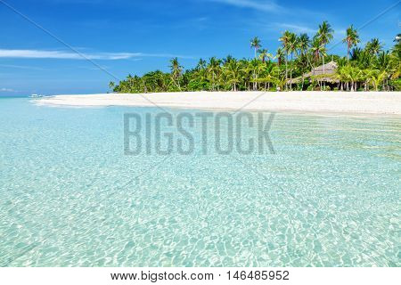 Fantastic Turquoise Beach With Palm Trees And White Sand