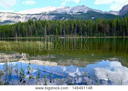 Snow capped mountains reflections in calm water. Honeymoon lake in Canadian Rockies. Jasper National Park. Alberta. Canada.