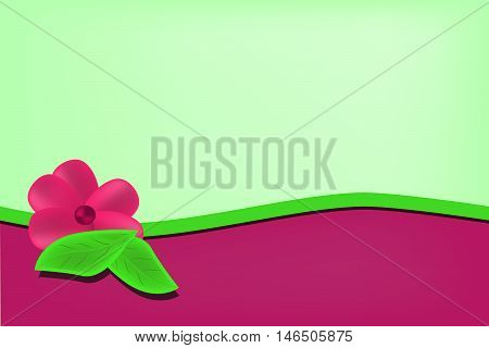 Light green background with magenta wave and flower