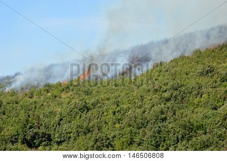 An arson attack on the mountains Prenestini of Castel San Pietro in Lazio