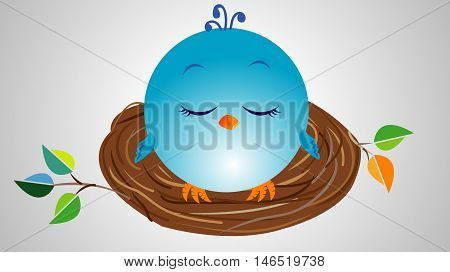 Cute Little Blue Bird Sleeping in the Brown Nest with Branches and Leaves