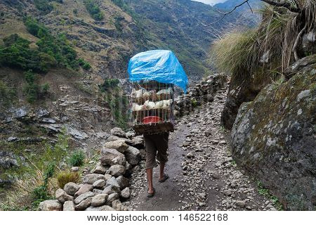Nepalese Sherpa Hiking Mountain Trail Village Path.Young Man Climbing Loaded Bags Track Traveler Beautiful Noth Asia.Summer Landscape Background.Horizontal Photo