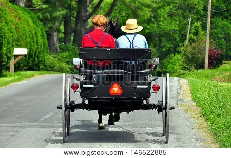 Lancaster County Pennsylvania - June 6 2015: : Amish father and his son wearing traditional straw hats driving their open horse and buggy along a country road *
