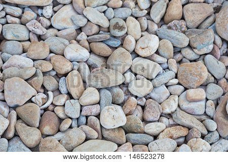 Round sea stone background, natural background and texture