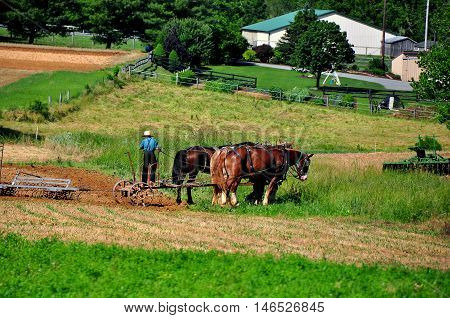 Lancaster County Pennsylvania - June 6 2015: Barefoot Amish boy plowing a field on the family farm pulled by two horses *