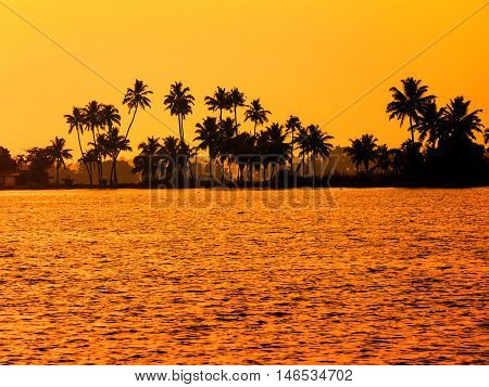 beautiful sultry tropical sunset landscape with silhouette of palm trees travel background India