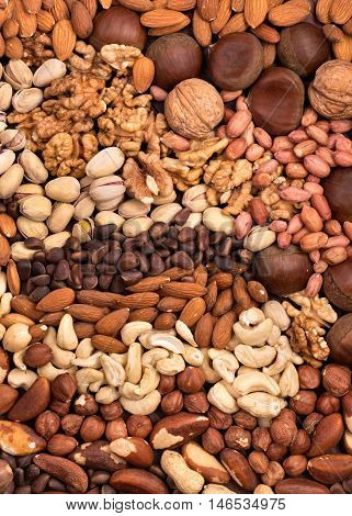 Background of randomly mixed different edible nuts
