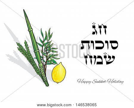 Sukkot. Happy Sukkot background. Hebrew translate: Happy Sukkot Holiday. Jewish traditional four species lulav, etrog for Jewish Holiday Sukkot. Vector illustration. New Year. Torah, Rosh Hashana.