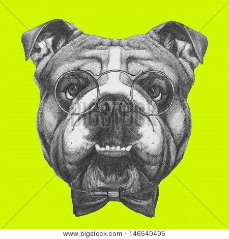 Original drawing of English Bulldog with glasses and bow tie. Isolated on colored background.