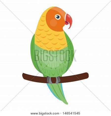 Cartoon parrot wild animal bird. Tropical parrot feather zoo bird, tropical fauna macaw flying ara. Cartoon exotic bird vector illustration.
