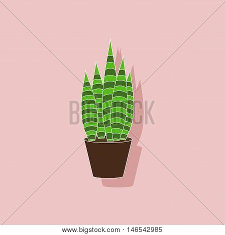 paper sticker on stylish background of plant Sansevieria
