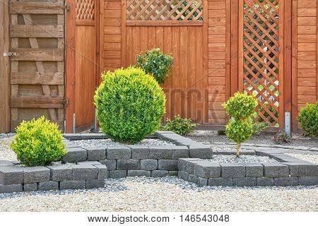 Ornamental Plants in Yard with Wooden Fence
