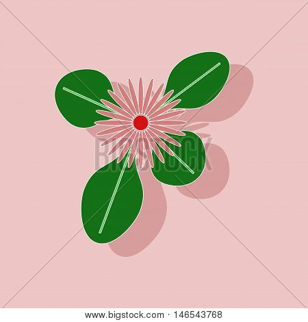 paper sticker on stylish background of plant Bellis