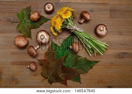 Posy of Yellow Dandelions,Forest Mushrooms,Green Leaves on the Wooden Table.Autumn Garden's Background.Top View