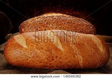 Freshly baked bread on display in store