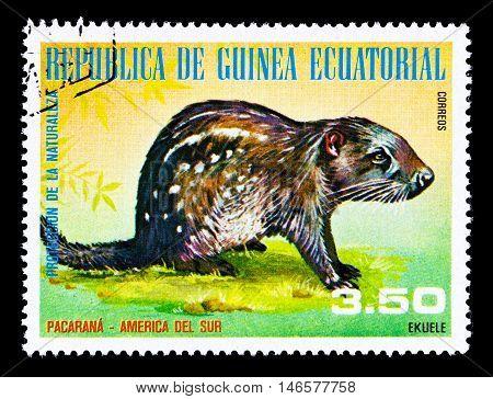 Guinea - Circa 1976