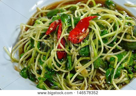 stir fried sunflower sprout with oyster sauce and chili on dish