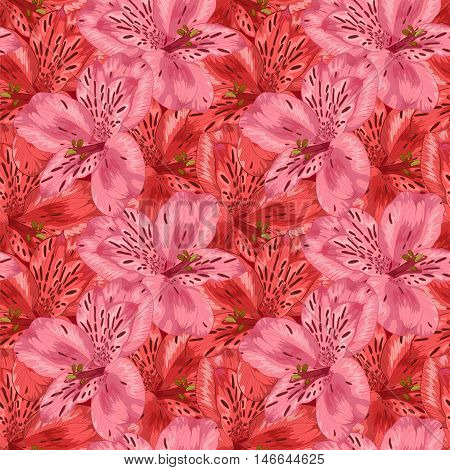 Beautiful seamless background with pink and red alstroemeria flower. Hand-drawn with effect of drawing in watercolor