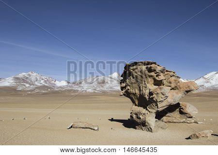 Rock formation in Uyuni Bolivia known as Arbol de Piedra