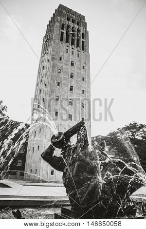 Tower in Ann Arbor Michigan in the Summer.