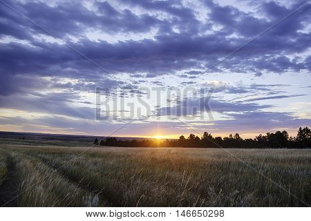 Wyoming Landscape at Sunrise in the Summer.