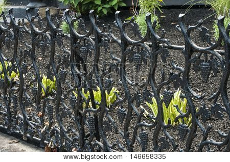 Old vintage cast iron lattice fence with ornaments