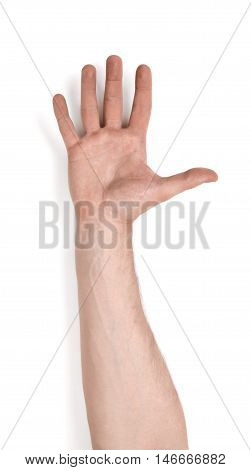 Close up view of a man's hand palm up, isolated on white background. Body language. Gestures.