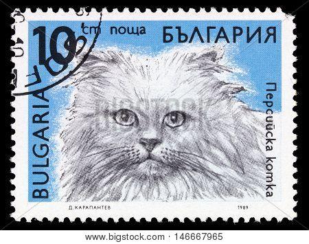Bulgaria - Circa 1989