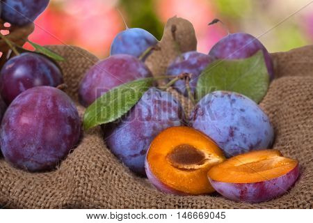 plums on the sackcloth with blurred background.