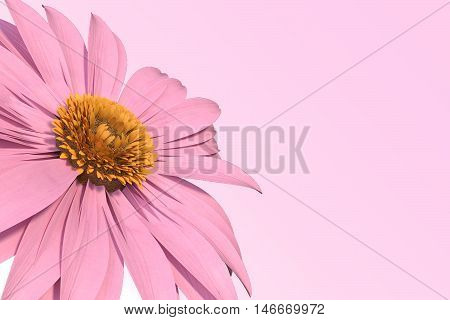 3D rendering of pink gerbera daisy on pink
