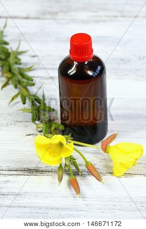 Evening primrose lat. Oenothera biennis flower and bottle of evening primrose oil
