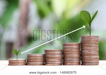young plant grown to stack silver coin in business growth concept on wood floor and Arrow points to top.