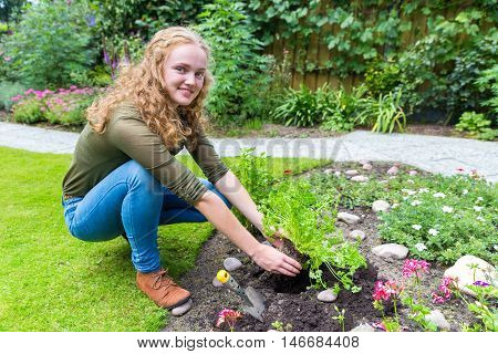Young caucasian woman planting parsley in garden soil