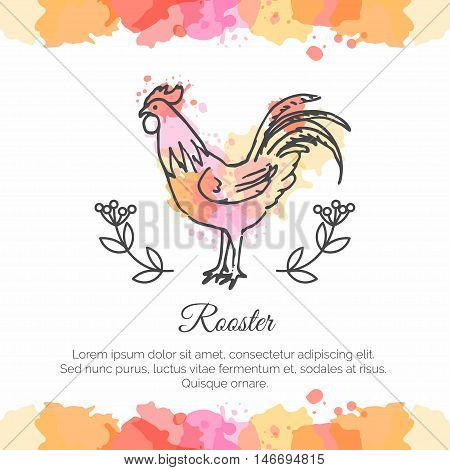 Hand Drawn Rooster. 2017 Chinese New Year of the Cock. Line art style illustration on watercolor background. Poster with symbol of year. Vector ecard.