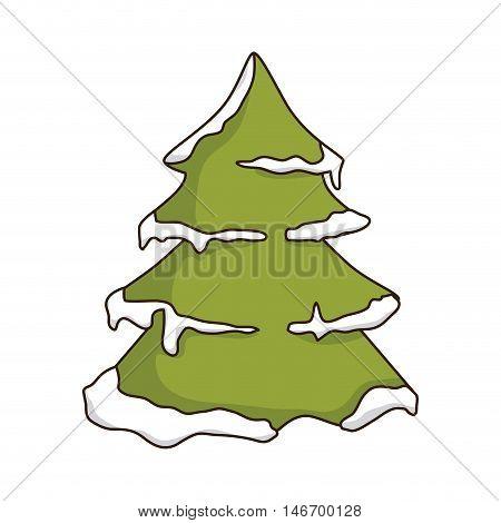 green pine tall tree with snow. winter season nature. vector illustration