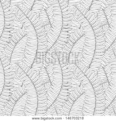 Beautiful monochrome black and white seamless background with fern leaves