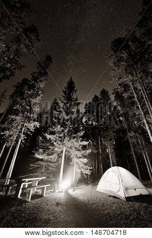 Camping in forest with stars and bonfire in Banff National Park in Canada