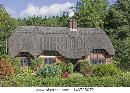 Lovely picture postcard quintessentially English thatched cottage in the New Forest in the UK on a sunny day. Picture taken from a public place.