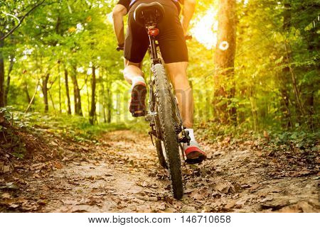 back view of mountain bike